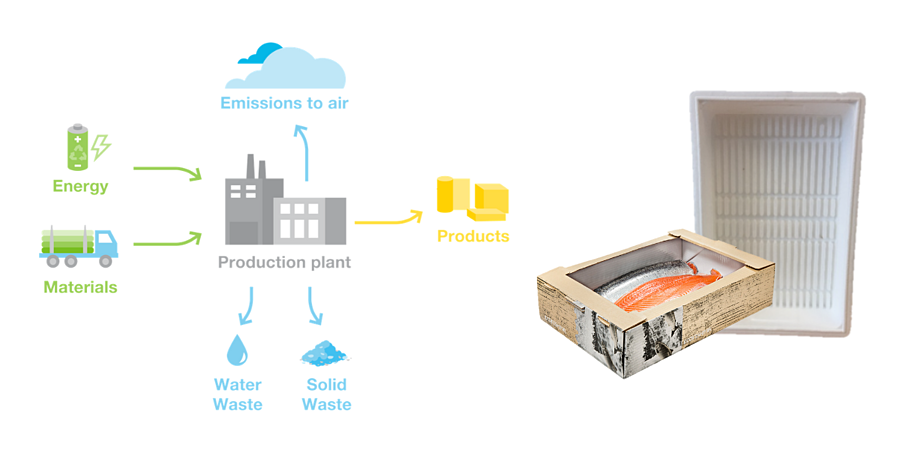 Life cycle Assessment- EcoFishbox and styrofoam packaging
